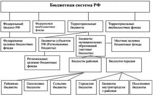 Budjetnaya_Sistema_RF_1