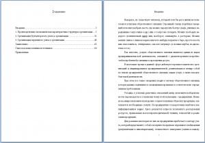 Отчет по производственной практике ВГУ по бухгалтерскому учету, анализу и аудиту